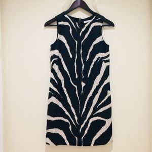 Loft Zebra Shift Dress